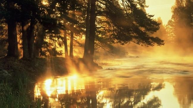 мысли о прекрасном солнечном утре